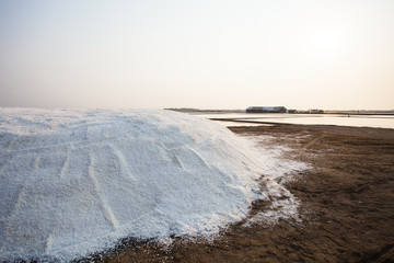 heap of salt harvest in salt farm industry