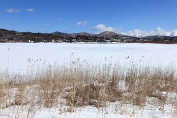 山中湖北岸の冬景色