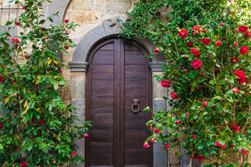 Portone di una casa con fiori