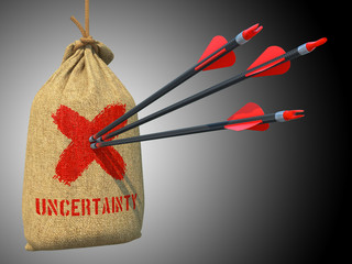 Uncertainty - Arrows Hit in Red Target.