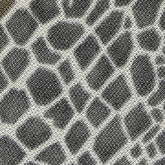 background based on reptile skin texture