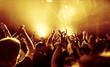 Leinwandbild Motiv Jubelnde Konzertbesucher auf Rock-Konzert