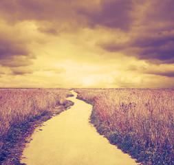 overcast day, instagram retro style