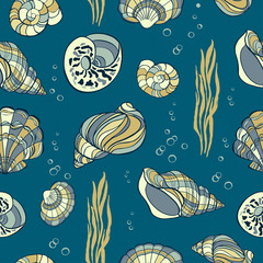 Hand drawn seashells, seaweed and bubbles on blue background, s