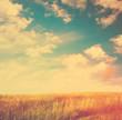 beautiful sky, instagram retro style