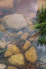 Rocks under the surface of an Irish lake