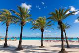 Mallorca Platja de Alcudia beach in Majorca - 80853054