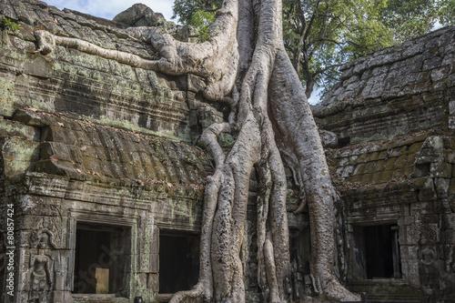 Cambodia, ancient Temple, Angkor Wat - 80857424
