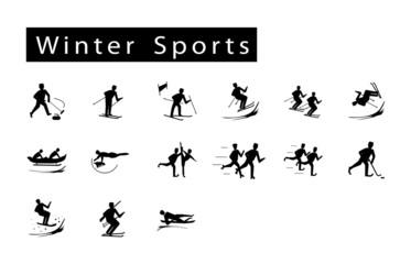 Mega Set of 15 Winter Sport Icons