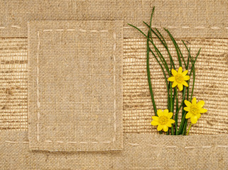 yellow flowers, green grass on a background of burlap
