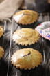 Choccolate home made pastry muffin