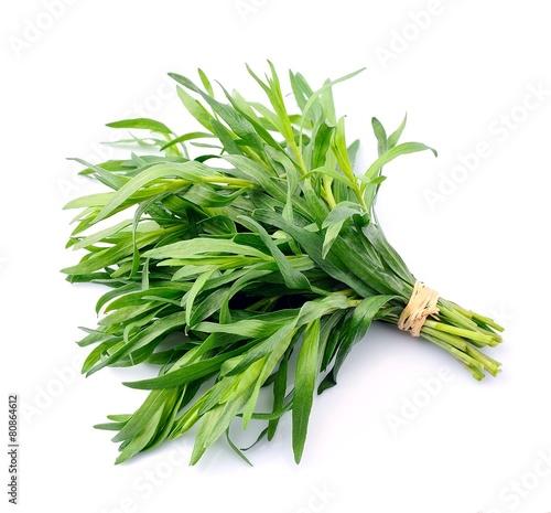 Tarragon herbs - 80864612