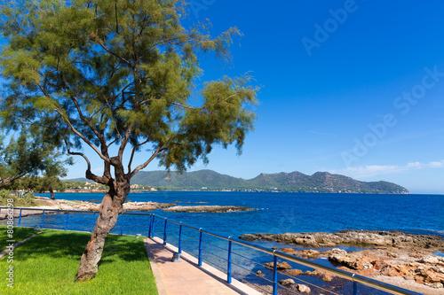 Leinwanddruck Bild Majorca Cala Bona beach Son Servera Mallorca