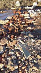Urban rocky shoals