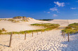 Moving dunes park near Baltic Sea in Leba, Poland - 80877443