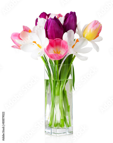 Papiers peints Crocus Fresh bouquet with tulips and crocus isolated on white