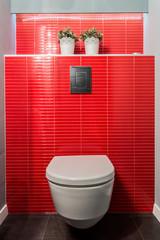 Toilet bowl, red tiles