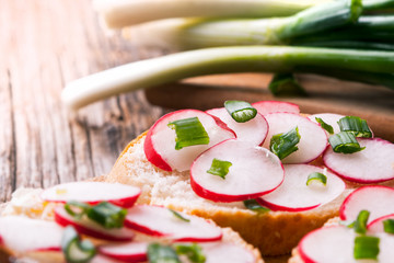 fresh delicious vegetarian sandwich