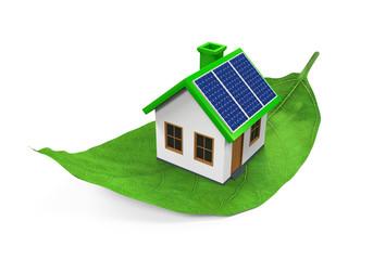 House on Leaf Isolated