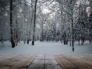 frozen woods and wooden floor