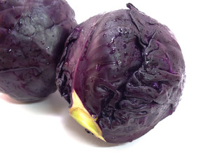 head of red cabbage isolated on white background