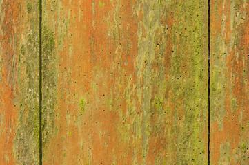 Hintergrund aus wurmstichigen Brettern mit Algen