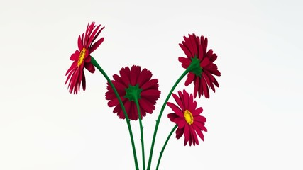 Kwiaty animacja czerwone 3d bukiet