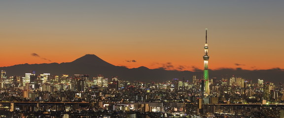 Tokyo city view with Tokyo skytree and mountain fuji .
