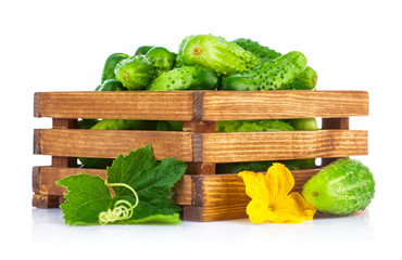 Fresh cucumbers in wooden box with green leaf and flower.