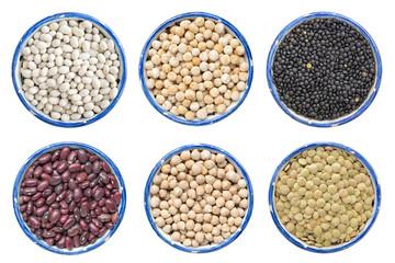 different legume