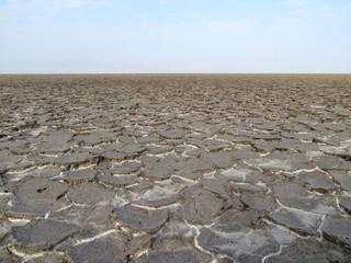 Danakil depression, plain of salt, Ethiopia