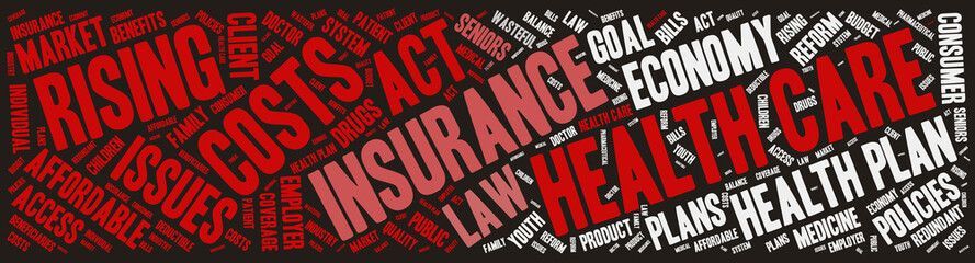 Word Cloud - Health Care Issues - Banner Dark
