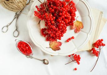 healthy viburnum jam