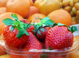 Citrus Strawberry