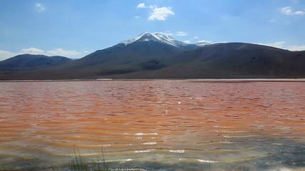 Bolivian altiplano landscape with coast of Laguna Colorada
