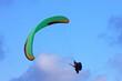 paraglider - 80929837