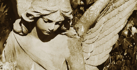 Vintage image of a sad angel on a cemetery against the backgroun