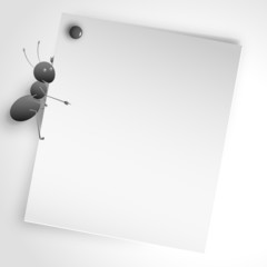 An ant point a white paper