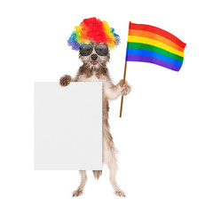 Funny Dog Supporting Gay Rights