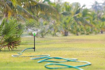 Water sprinkler in garden.