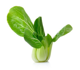 Bok choy isolated on a white background