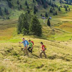 Bergwandern in herbstlicher Natur