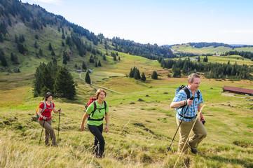 gemeinsame Wanderung im Gebirge