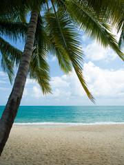 Landscape of Koh Samui island