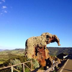 elephant rock, sardinia, italy