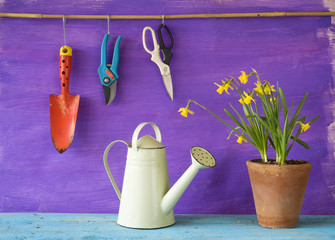 young flowers and gardening tools, free copy space