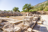 The ruins of bathhouse in the archaeological area of Ephesus  poster