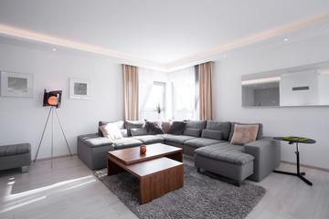 Designed interior with modern furniture
