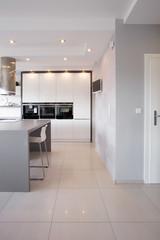 Kitchen unit in designed interior