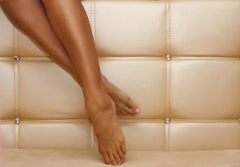 Beautiful shapely female legs